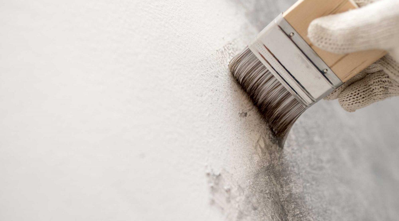 Malermeister mit Fachexpertise in Sanierung und Schimmelsanierung